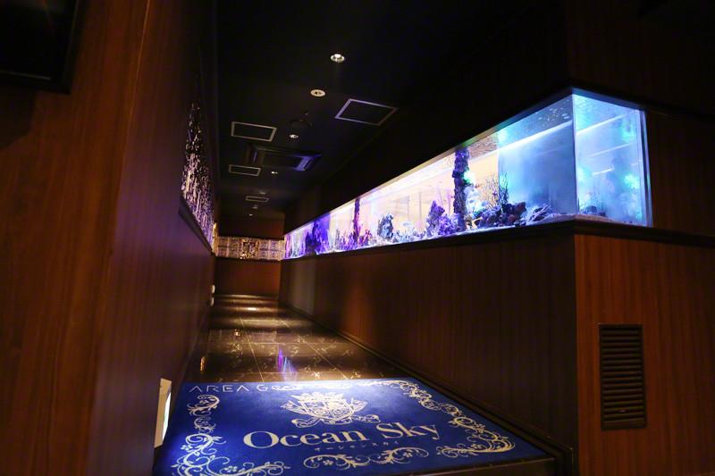 OCEAN SKY/すすきの画像13279