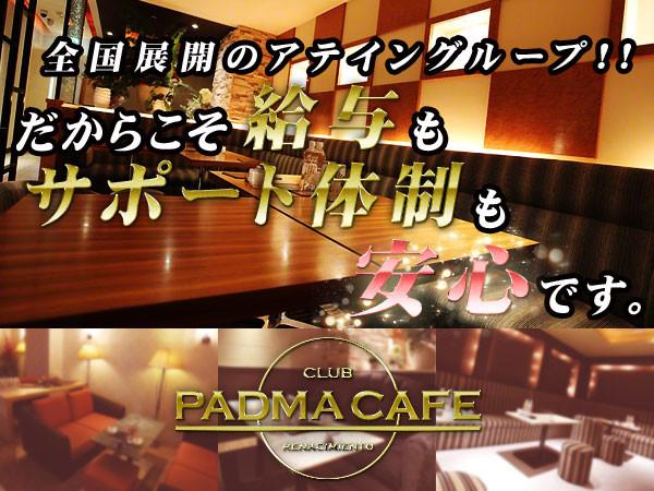 PADMACAFE/すすきの画像9802