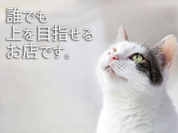 LARME 明石桜町店/明石画像25418