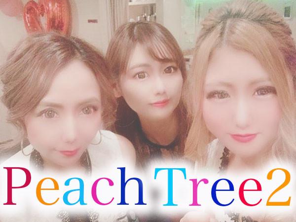 Peach Tree2 熊本植木店/植木町画像24500