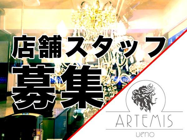 ARTENIS/上野画像13586