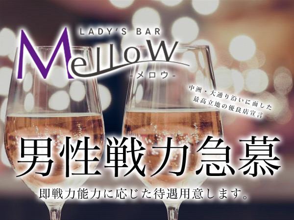 Lady's Bar Mellow/中洲画像20305