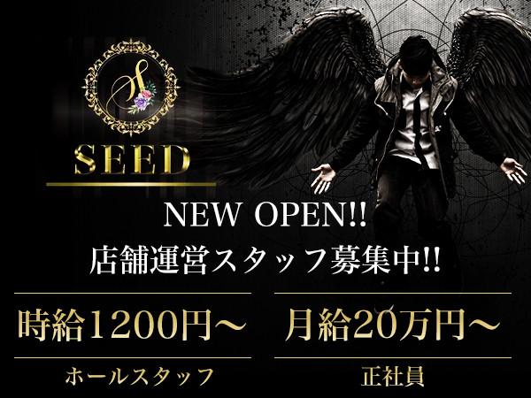 SEED/祇園画像34448