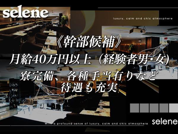 selene/歌舞伎町画像16775