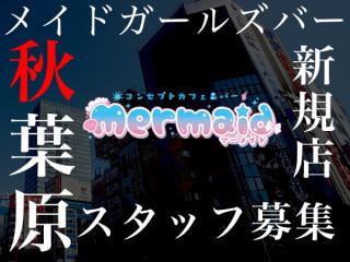 cafe&bar Mermaid/秋葉原画像33802